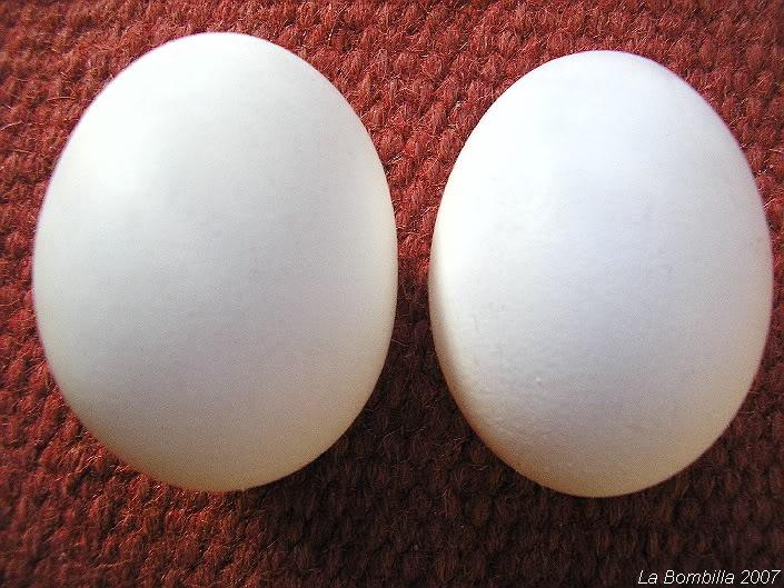 De huevos