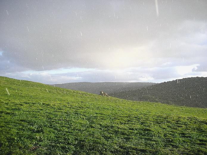 Granizada en Segóbriga